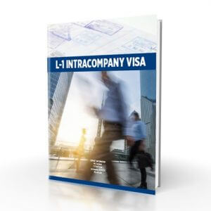L1 Business Plan Intracompany