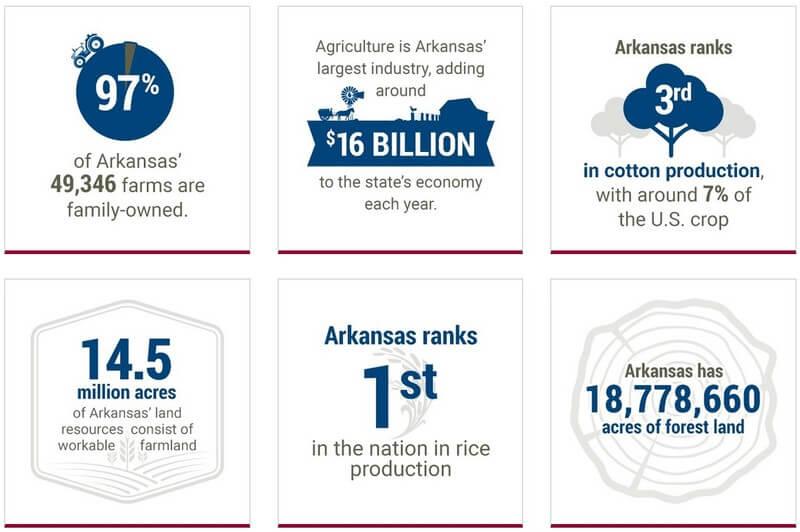Arkansas Small Business Facts