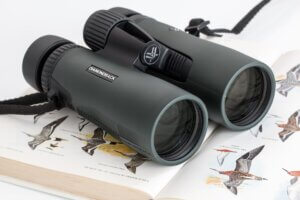 bird-watching clubs and guide services