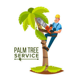 tree trimming business