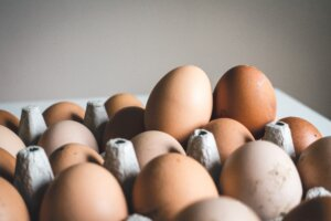 Egg producers in U.S. increase earnings with Wise Business Plans